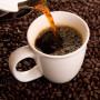 Le origini e i consumi del caffè