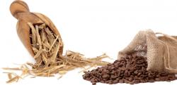 Fornitori: Caffè al ginseng