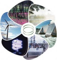 Fornitori: Energia