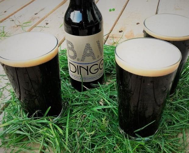 Birra artigianale. Dingo, Oatmeal Stout
