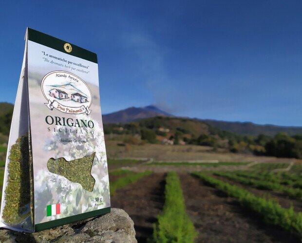 Origano siciliano. Coltivato secondo una forma di agricoltura sostenibile a basso impatto ambientale