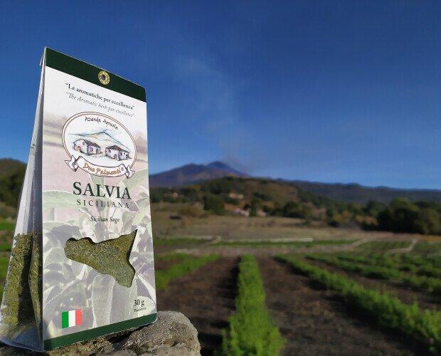 Salvia siciliana. Coltivato secondo una forma di agricoltura sostenibile a basso impatto ambientale
