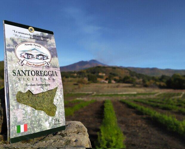Santoreggia siciliana. Coltivato secondo una forma di agricoltura sostenibile a basso impatto ambientale