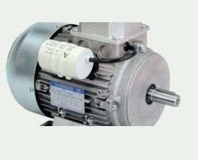 Motori Elettrici.Progettati su misura per ogni cliente.