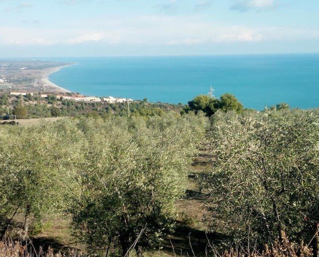 foto panorama.