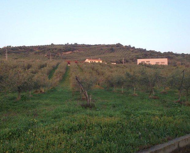 foto panoramica.