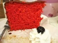Rapa Rossa
