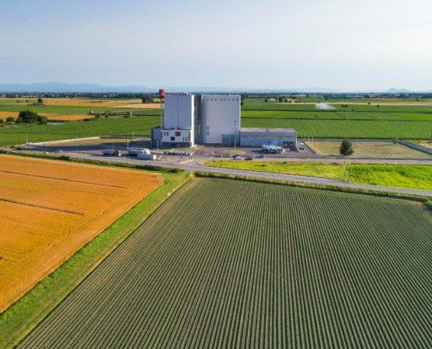 Farina.Dove nascono le farine Mulino Padano.