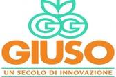 Giuso Guidi