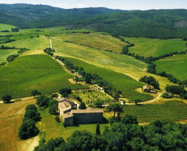 Il terreno. Il vino più antico risale al 1955