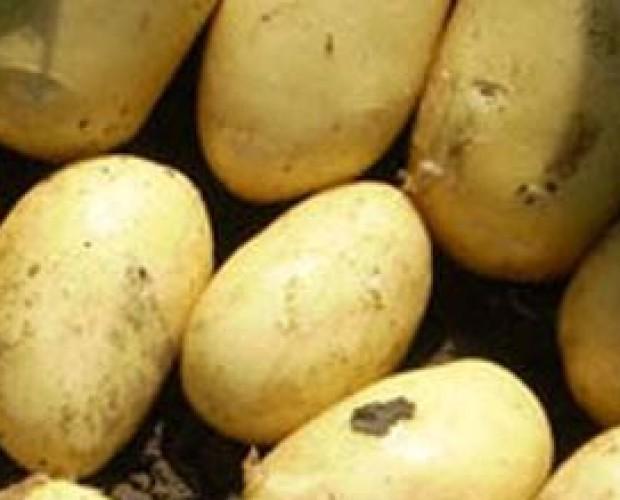 Patate.La Patata con Selenio