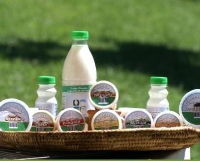 I prodotti caseari. Il gusto e la qualità del nostro territorio.