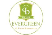 Evergreen di Pietro Bonaccorso