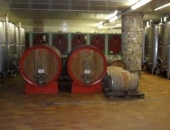I vini sfusi. Produzione certificata in ogni aspetto
