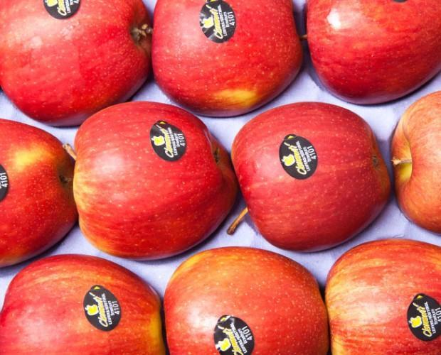 Frutta Fresca.Prodotti di qualità, certificati