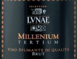 Il vitigno. Famoso per la sua altissima qualità