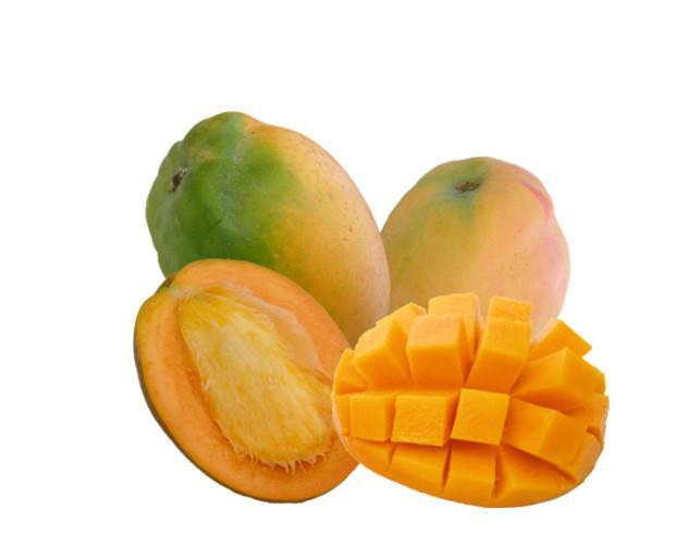 Mango di Sicilia. Prodotto esotico, di qualità e Biologico