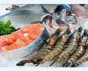 Piatti di Pesce.La migliore qualità di pesce fresco.