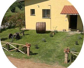 anteprima-azienda-agricola-del-sole.