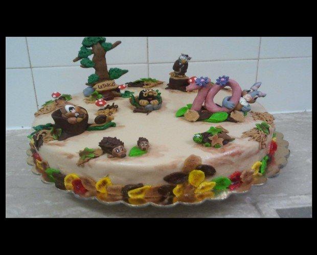 torta. torta riccio