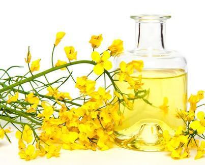 Olio di Colza.Olio vegetale di buona qualità