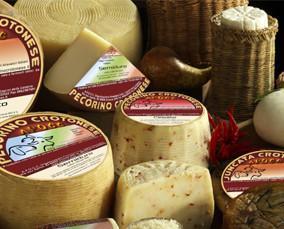 Formaggi. Una selezione dei migliori formaggi pecorini del marchesato crotonese