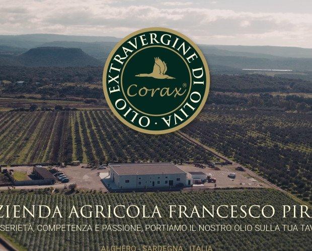 Az. Agricola Piras F. Immagine aerea della nostra azienda