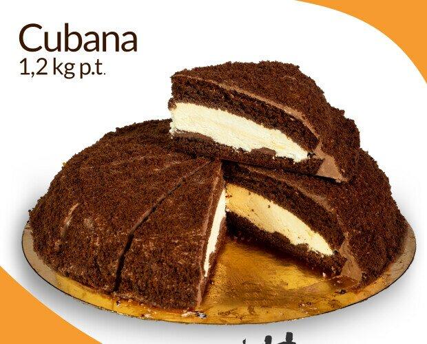 Cubana. Pan di Spagna al cioccolato e zabaione