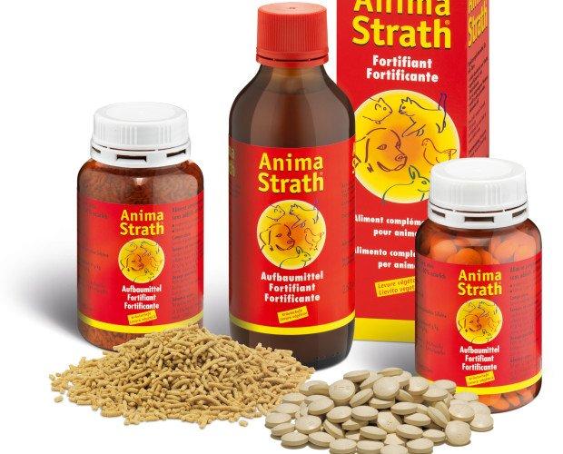 Veterinaria.integratore per animali: liquido, compresse, granulare