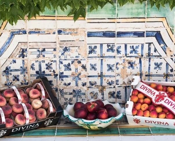 Frutta Fresca.Nettarine, pesche ed albicocche