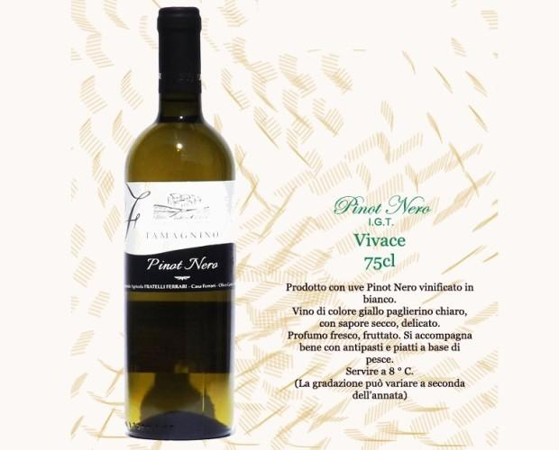 Vino Bianco. Pinot Nero IGT