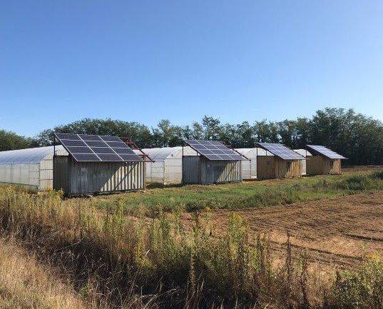 serre_A. Alcune delle nostre serre alimentate ad energia solare