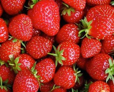 Frutta Fresca.Varietà: Candonga, Sabrina, Fortuna