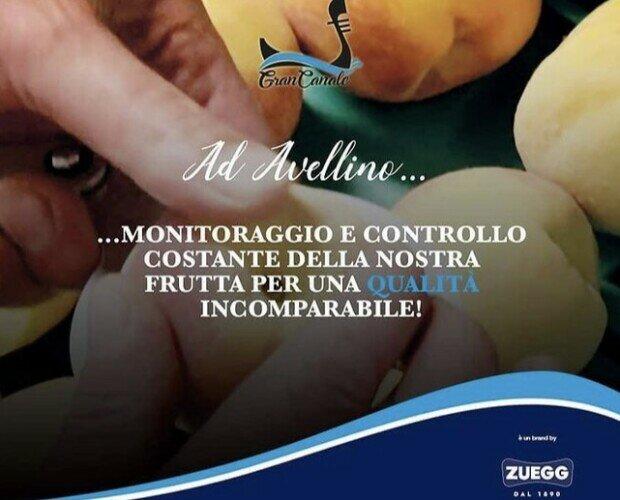 GRANCANALE BY ZUEGG. Monitoraggio e controllo della nostra frutta per una qualità incomparabile.