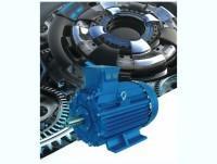 Motori elettrci