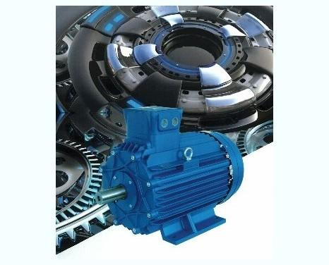 Motori Elettrici.Vendita e manutenzione.