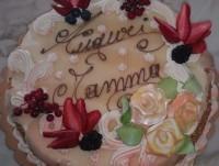 Fornitori Torta