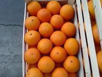 Cassetta arance