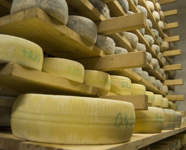 Stagionatura. I nostri formaggi in stagionatura sopra assi di legno