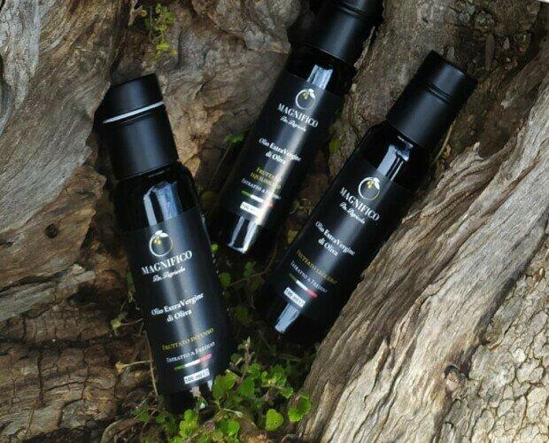 Campioncini olio EVO 100 ml. Campioncini 3 x 100 ml - FRUTTATO LEGGERO - EQUILIBRATO - INTENSO