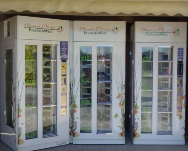 Cabine per fiori. Distributori automatici per la vendita dei fiori