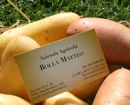 Patate. Patate in agricoltura sostenibile