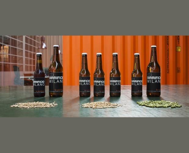 Birre artigianali. Birre, malti e luppolo, materie prime eccelse