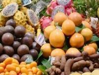 Frutta fresca ed esotica