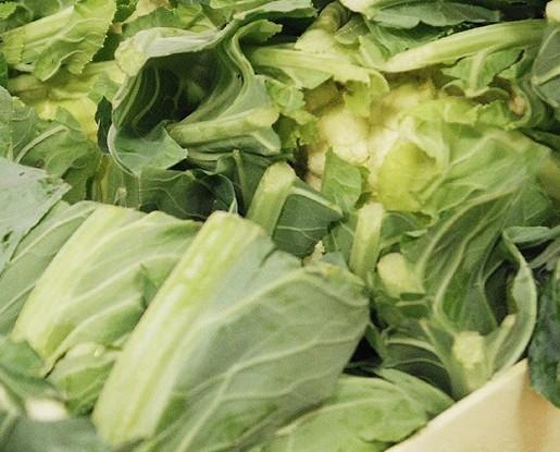 Verdura Fresca.Prodotti locali controllati