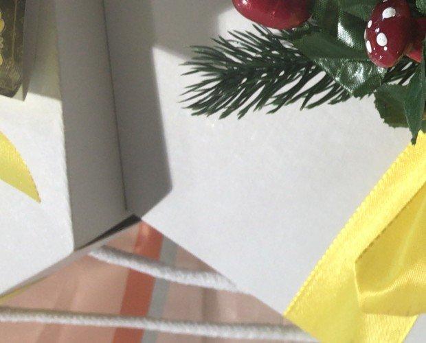 170755B8-1DF3-486F-A356-C5A3673E23D9. Panettone al limone con inserto in ceramica tema siciliano