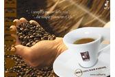 Caffè DF  - TORREFAZIONE