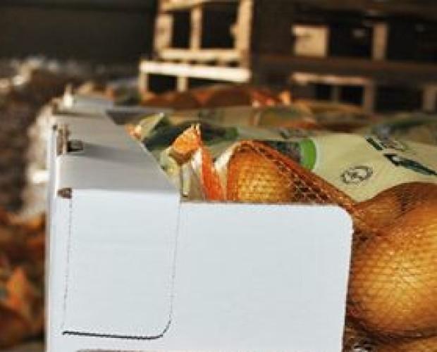 Patate.Sacchetti da 1 kg fino a 10 kg