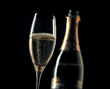 Champagne. Solo i migliori vini
