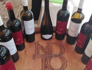 CERCASI Rappresentante/Distributore Vino